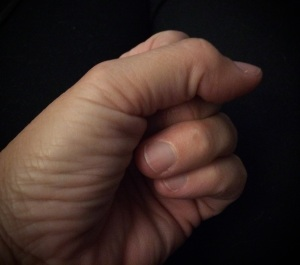 Janis's fist